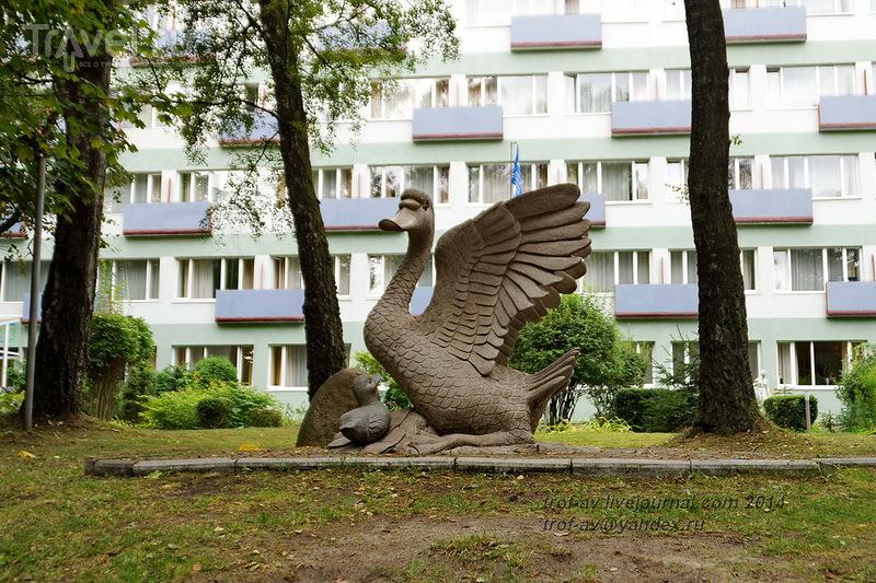 Светлогорск-Rauschen / Фото из России