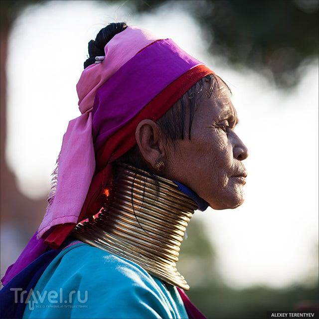 Длинношеие...  Мьянма / Мьянма