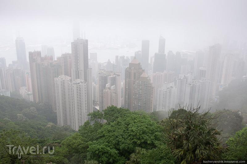 Гонконг / Фото из Китая