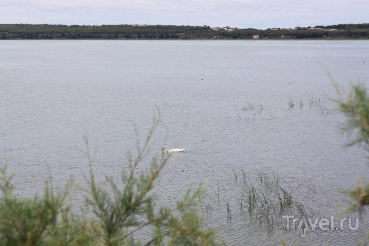 Вранское озеро - не проезжайте мимо! / Хорватия
