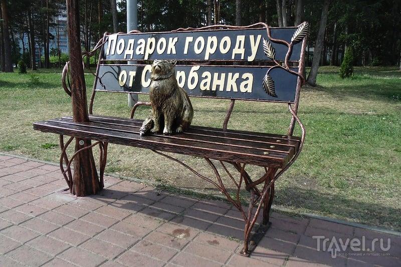 Арт-скамейки Челябинска / Россия