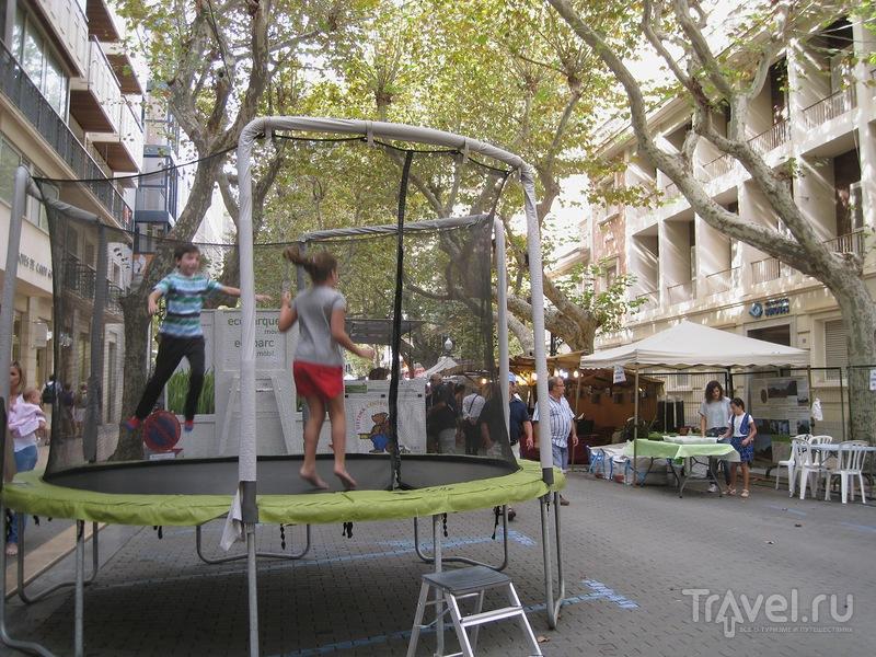 Испания. Золотая осень, 2014. Фестиваль Эко-Дения / Испания