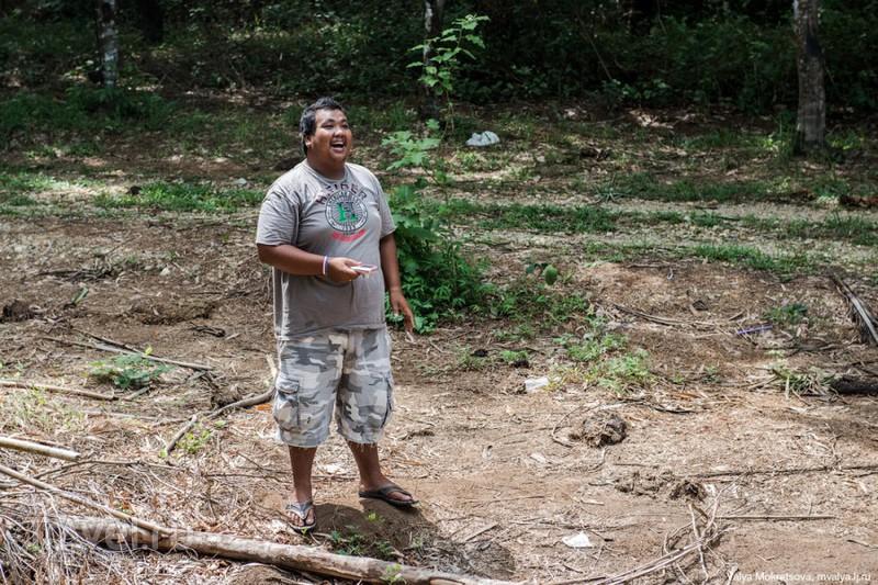 Слоны, черепахи и другие обитатели острова Пхукет / Таиланд