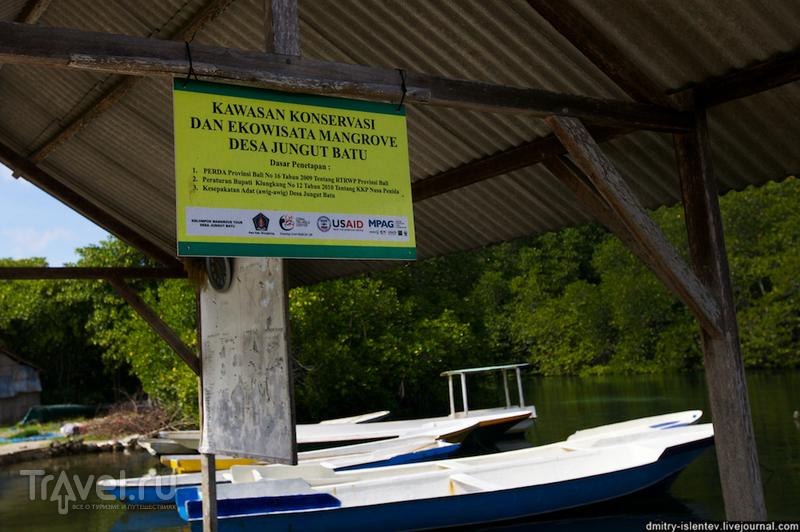 Лембонган, Мангровый лес / Индонезия