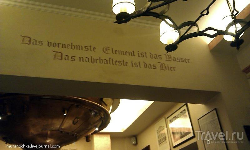"""Дюссельдорф: пивная """"Франкенхайм"""" и блюдо """"Хальве Хан"""" / Германия"""