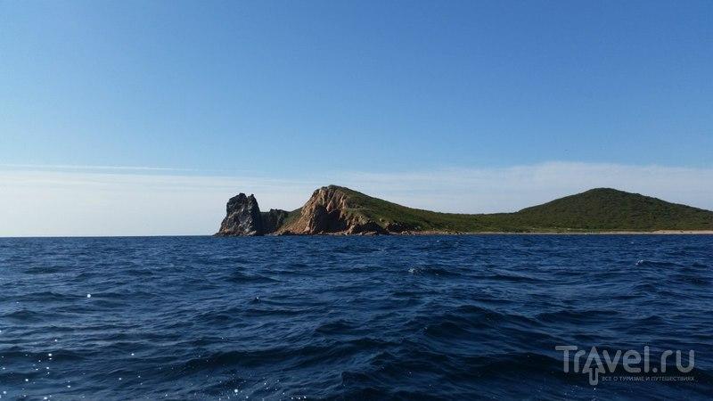 Остров Желтухина / Фото из России