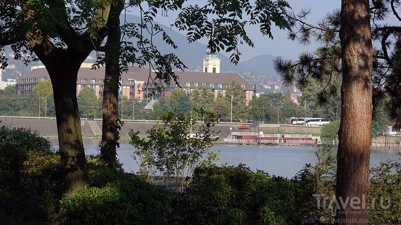 Остров Маргит в Будапеште / Венгрия