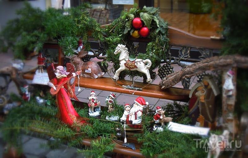 В ожидании Рождества: Ландсхут, Германия / Германия