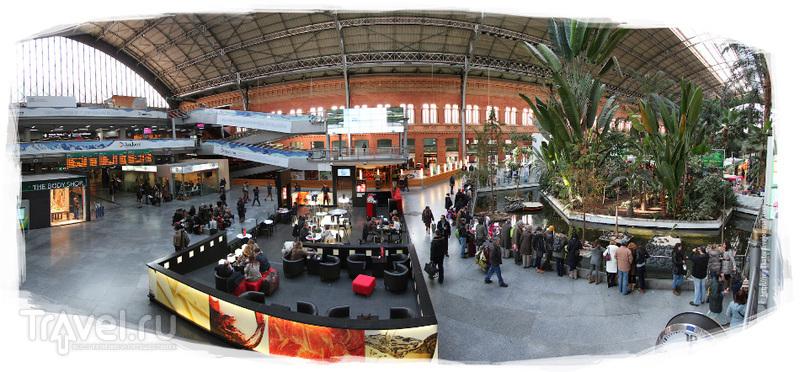Железнодорожный вокзал Аточа в Мадриде / Испания