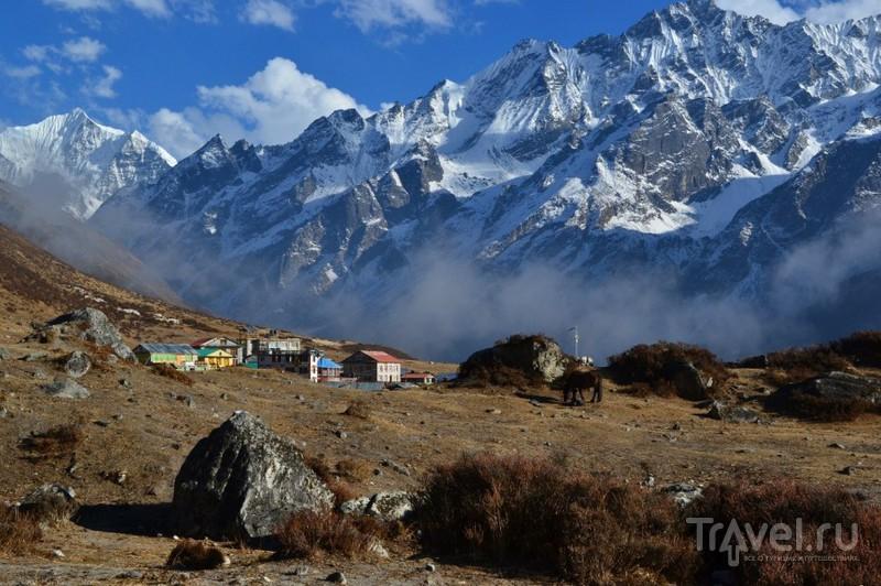 Треккинг в Лангтанг, Гималаи / Фото из Непала