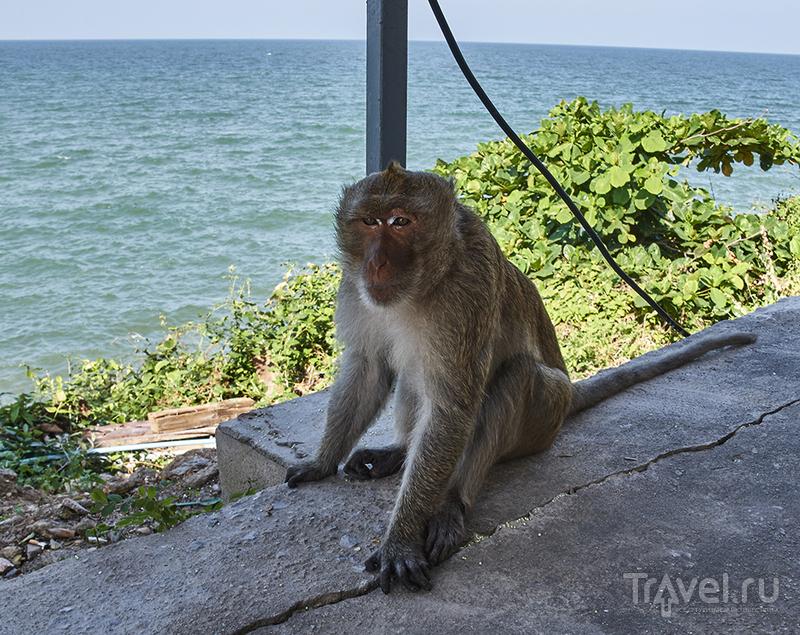 Ча-Ам - тайский курорт для тайцев / Таиланд