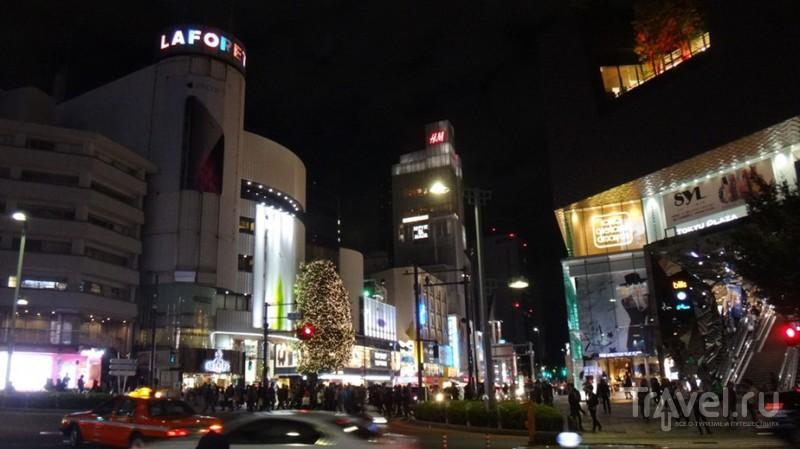 Япония. Рыба и Кабуки. Токио / Япония