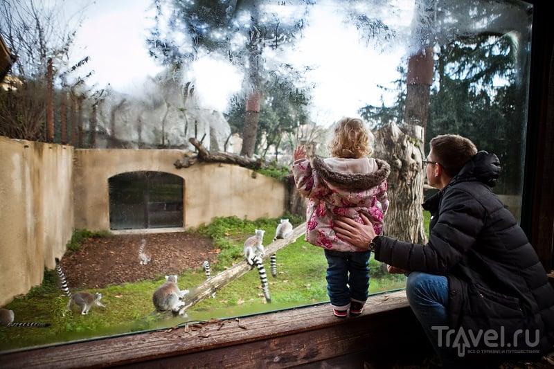 Римский зоопарк / Италия