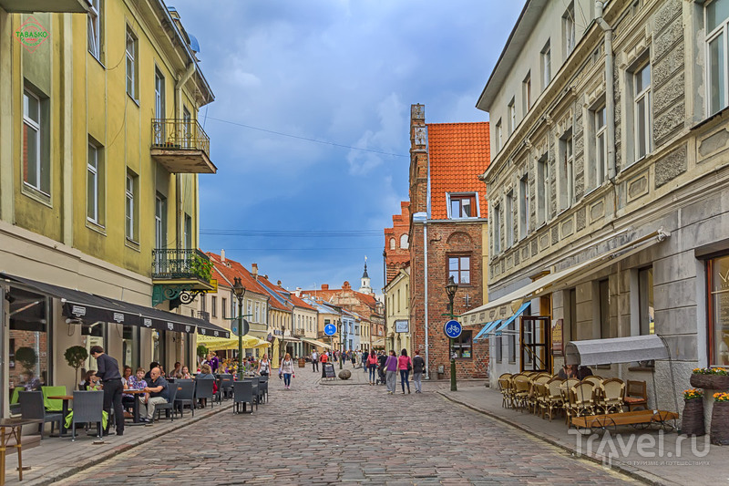Каунас: обыденный хаос и никаких шуточек! / Фото из Литвы