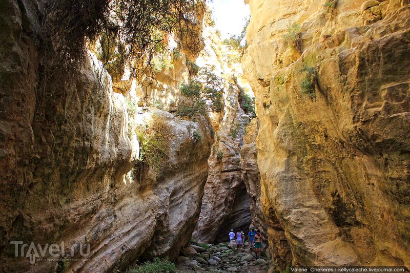 Ущелье Авакас / Кипр