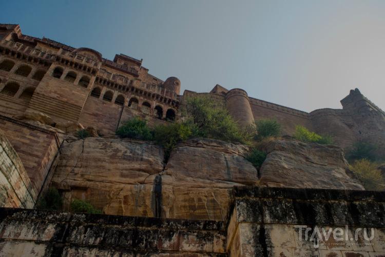 Джодхпур, Индия. The blue city of my dreams / Индия
