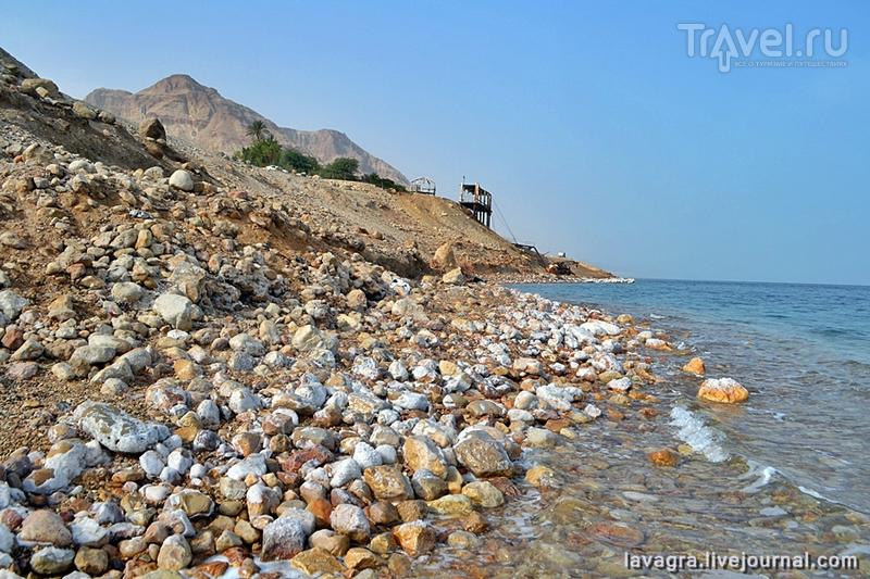 Пляжи Израиля, как оригинальные достопримечательности / Фото из Израиля