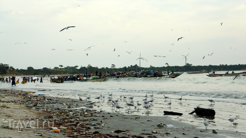 Tanji fish market / Гамбия