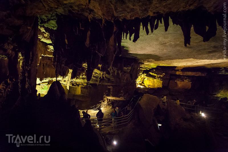 США. Национальный парк Mammoth Cave / Фото из США