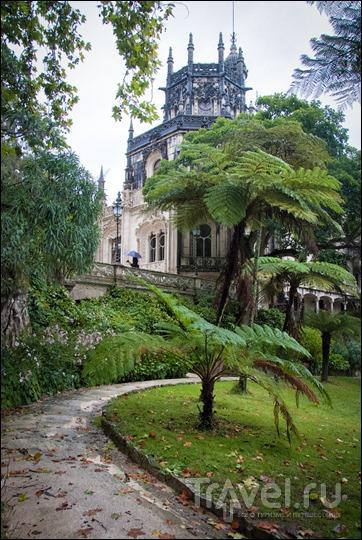 Синтра, Португалия: мистический Quinta da Regaleira и окрестности / Фото из Португалии