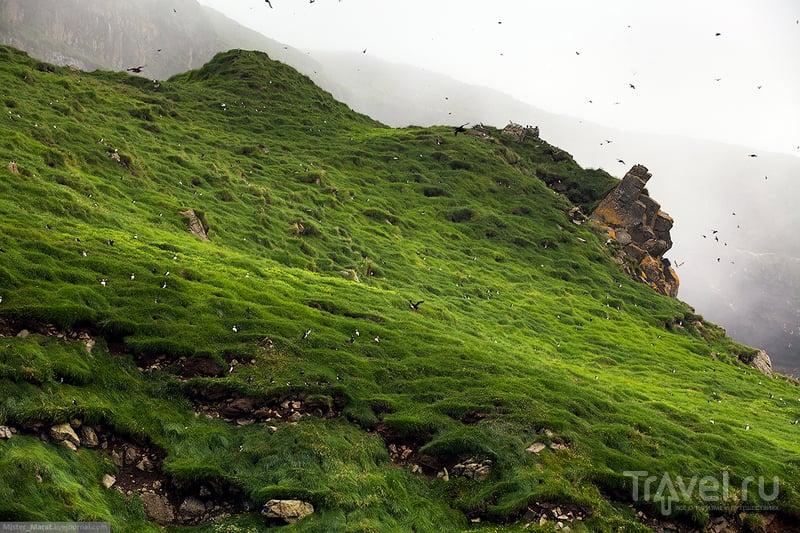 Фареры: остров Мичинес / Фото с Фарерских островов