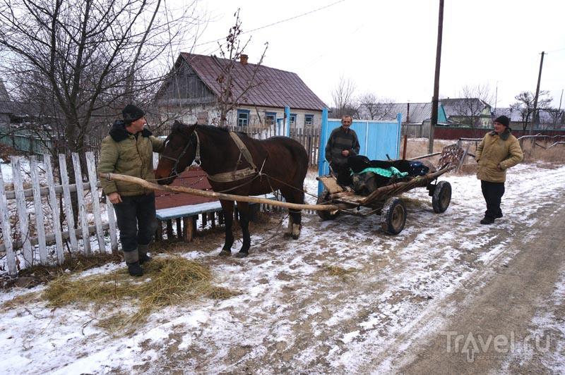 Моя Украина. Село / Украина