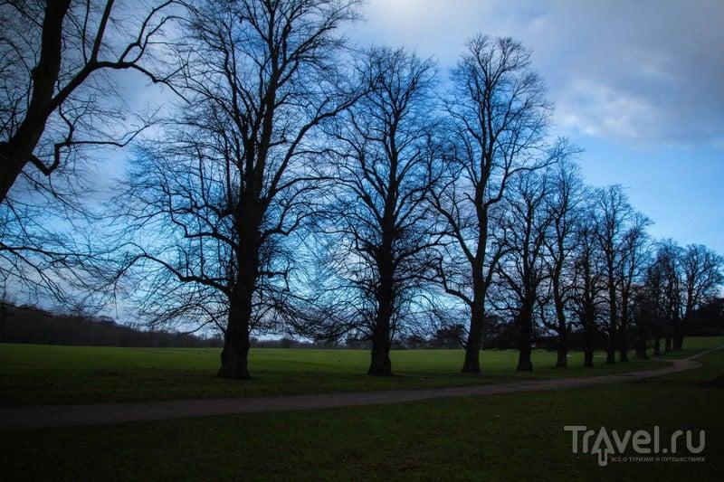 Воллатон Парк в Ноттингеме / Великобритания