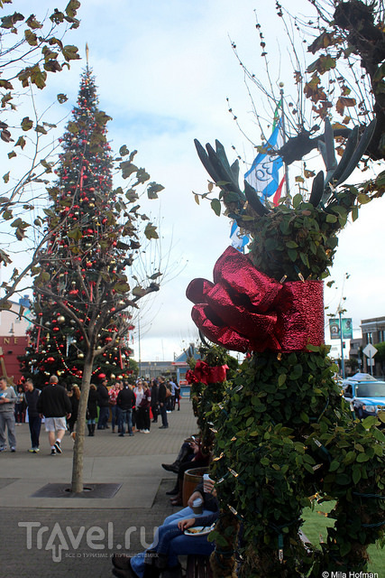 Предрождественский Сан-Франциско / США