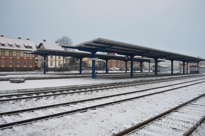 Паровозное чудо в польской глубинке / Польша