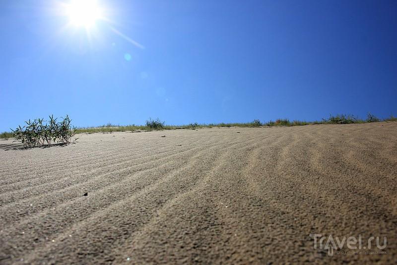 Узоры северной пустыни / Фото из России
