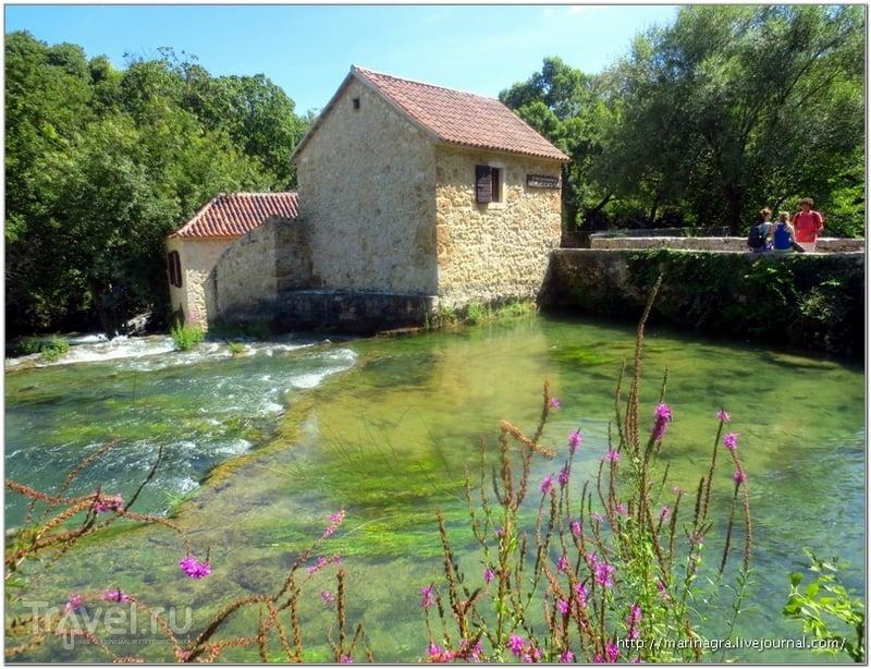 Река Крка в Хорватии: купание под сенью водопада / Фото из Хорватии