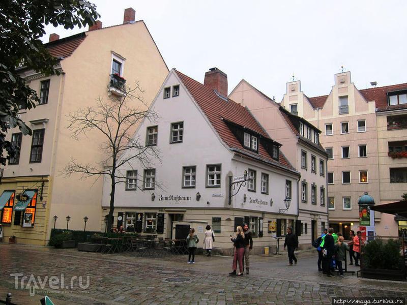Где попить пива в Берлине / Германия