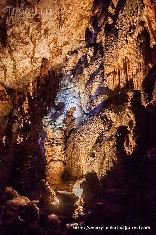 Пещера Постойнска-Яма / Фото из Словении