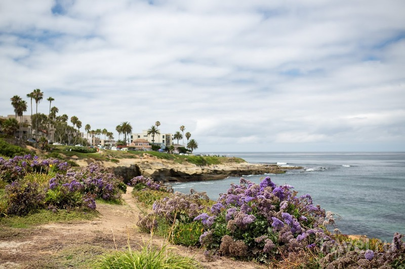 День в Ла Хойе, La Jolla, CA, Калифорния, США / Фото из США