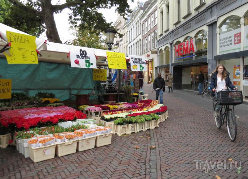 Магазины в Утрехте, Нидерланды / Фото из Нидерландов