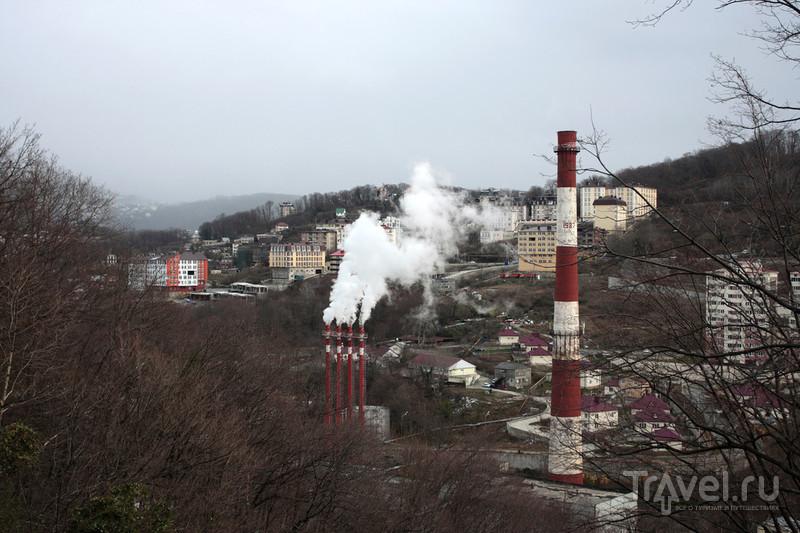 Сочинский дендрарий. Лето в январе / Фото из России