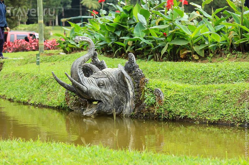 Индонезия. Бали / Индонезия