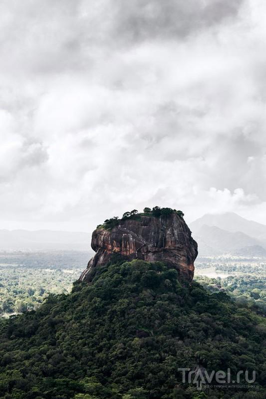 Шри-Ланка 2015: Хабарана и окрестности / Фото со Шри-Ланки
