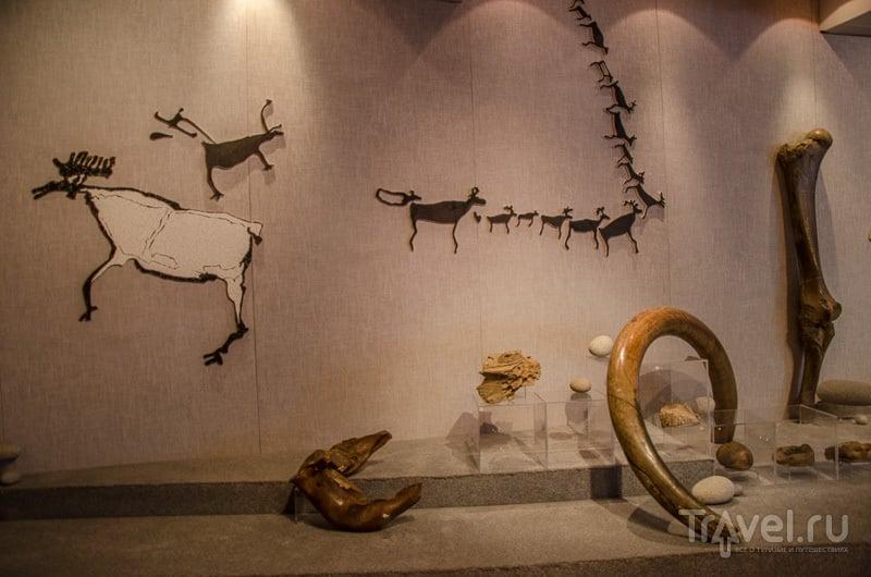 На территории Колымы обитали мамонты / Фото из России
