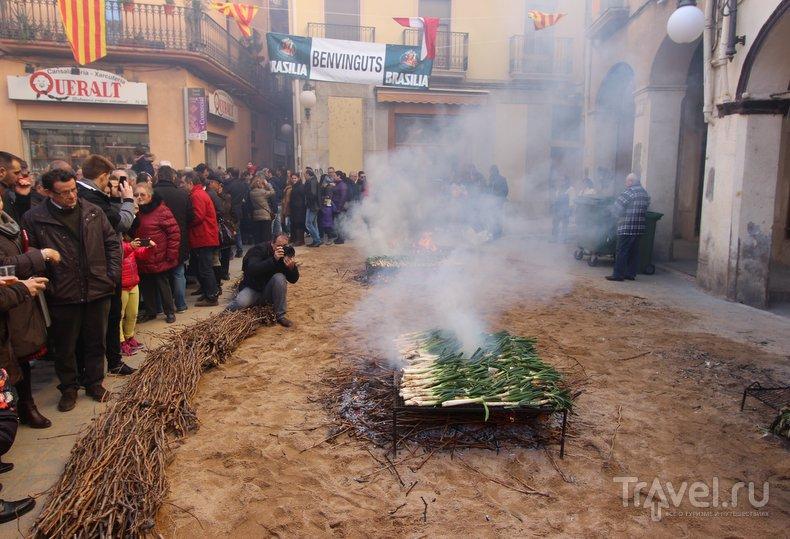 Каталония: съесть килограмм лука и не заплакать / Испания