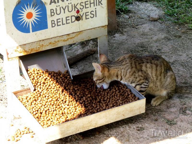 Пешком по Анталье / Турция