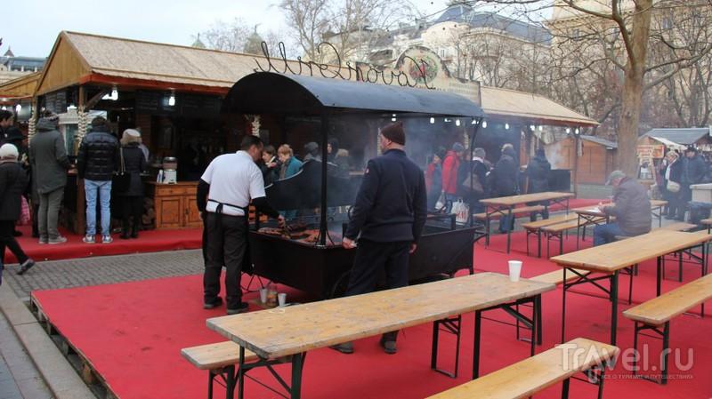 Фестиваль свиньи мангалицы в Будапеште / Венгрия