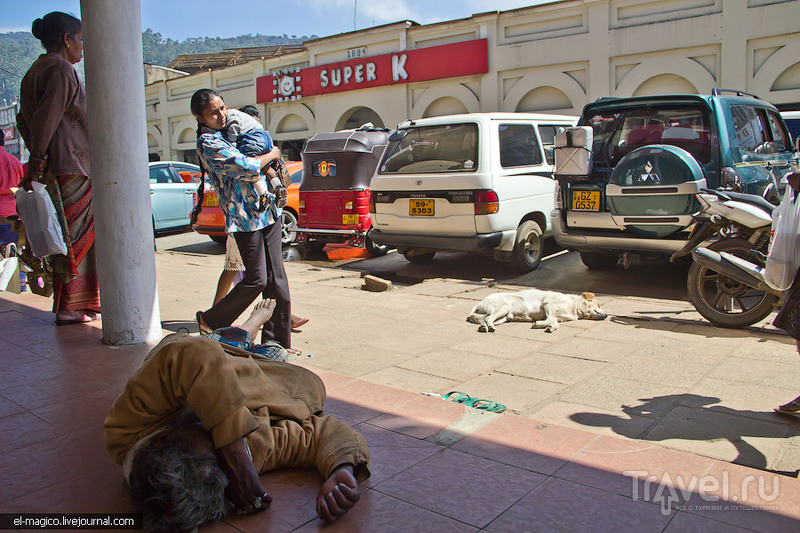 Чайные истории или сколько алкоголиков спит на улицах в день выборов? / Шри-Ланка