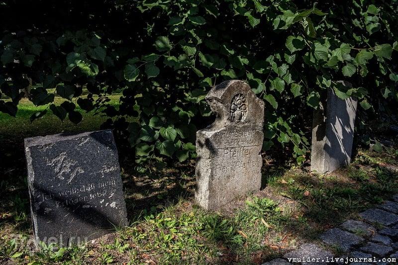 Немного о кладбищах Калининграда и об отношении к ним / Россия