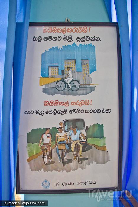 Ланкийское правосудие или как мой соратник неделю просидел в тюрьме / Шри-Ланка