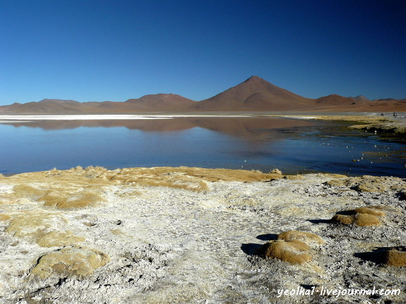 Un gran viaje a America del Sur. Боливия. Выход в космос. Красные воды лагуны Колорада / Фото из Боливии