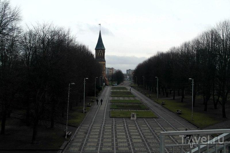 Калининград - Остров Канта (Кнайпхоф) / Россия