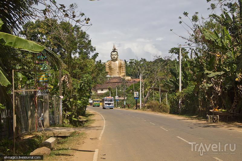 Как я побывал в аду для буддистов и вернулся назад / Фото со Шри-Ланки