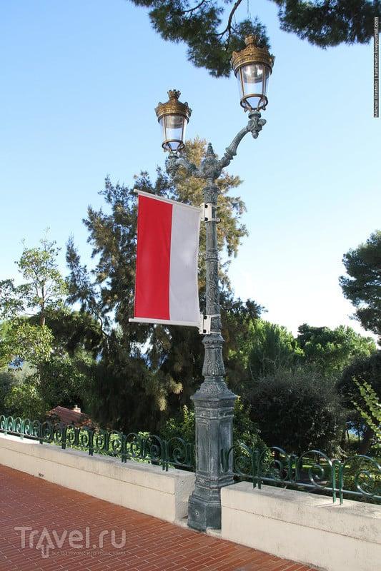 Прогулка около княжеского дворца Монако / Монако