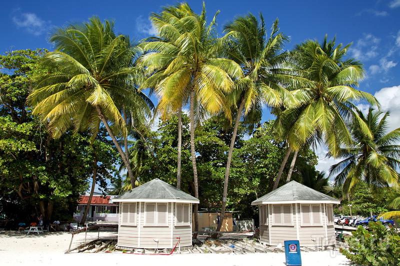 Барбадос, гуляем по пляжу Worthing! / Фото с Барбадоса